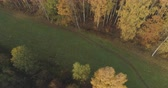 dub : Aerial forward shot over autumn rural landscape with field and forest in the morning