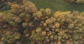 mix : Aerial top view forward shot over field and autumn forest in the morning