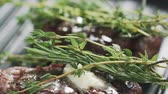 加える : preparing steak filet mignon with butter and herbs