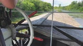 navegando : Pov Cruise En Swamp Lake Green Archivo de Video