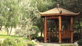 chengdu : Chinese arbor summer park Stock Footage