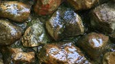 brooks : water drops stone background nobody hd footage