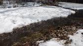 marchs financiers : Early spring landscape of the snow in the forest. Streams flow in the spring in spring. Stock Footage