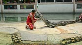 valente : SAMUPRAKARN, THAILAND - MARCH 30, 2015: Professional trainers perform risky stunt show with big fresh water crocodile in Thailand in March 30, 2015