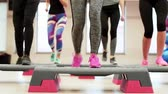 studnia : Low section of women doing stepping exercise Wideo