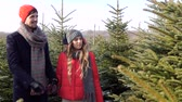 decisão : Couple choosing a christmas tree