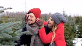 decisão : Cheerful couple looking for a christmas tree Vídeos
