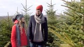 consumidor : Man and woman looking for a perfect christmas tree Stock Footage