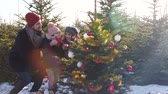 assistance : Child putting decorative star on christmas tree Stock Footage