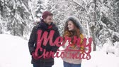 süsleme : Cheerful couple wish you a Merry Christmas