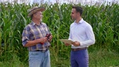 explicando : Conversation between farmer and businessman Stock Footage