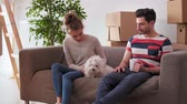 saamhorigheid : Having a break from moving house with pet Stockvideo