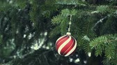 Red Christmas Ball on the Fir Branch 4K