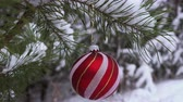 Christmas Ball hanging on the snow covered pine Branch 4K