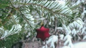 fir : Christmas Star shaped Decoration hanging on snowy pine branch 4K Stock Footage