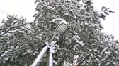 Snow falling on a lamp post, slow motion HD