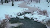 River water flow among snow and ice 4K Стоковые видеозаписи
