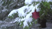 christmas tree ornament : Christmas Star shaped Decoration swinging on snowy fir tree