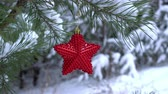 Red Christmas Star on the snow covered pine Branch 4K
