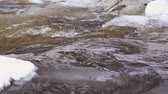 Cold water flows in the river ice,slow motion. Stockvideo