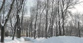 belarus : Gomel, Belarus. Snowy City Park Near Rumyantsev-Paskevich Palace In Sunny Winter Day