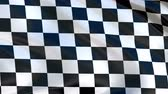 siker : Checkered flag flying in the wind, in the sport to the finish. Cyclic animation. Stock mozgókép