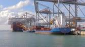 sorting : RWG container terminal in Rotterdam Stock Footage