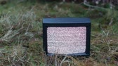 analog : TV no signal in grass