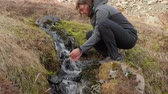 drinkwater : Drinking from a stream in Iceland Stockvideo