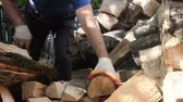 preparation clip : man chopping wood on an autumn day