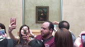 anêmona : Shot of Selfi with the Mona Lisa