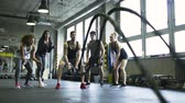 fisiculturismo : Young man in crossfit gym working out with battle ropes. Stock Footage