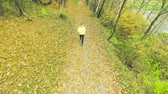 многоцветный : Young athlete running outside in autumn forest. Aerial view.