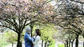 cardigã : Senior couple hugging under the cherry blossom tree.