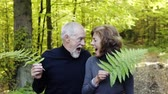 первый : Senior couple on a walk in autumn forest.