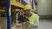 cardboard : Woman warehouse worker with tablet. Stock Footage