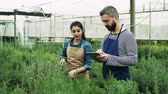 garden center : Young gardeners with tablet in a large greenhouse. Stock Footage
