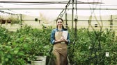 bota : Young woman gardener working in a large greenhouse.