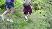 teenage girl : Teenagers with backpacks hiking in forest. Summer vacation.