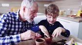 dede : Senior grandfather with small grandson sowing seeds at home.