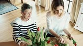 tulip : Elderly grandmother with an adult granddaughter at home., putting flowers in a vase.