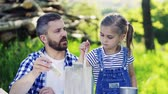 quadro : Father with a small daughter outside, painting wooden birdhouse. Stock Footage