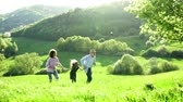 blooming : Senior couple with granddaughter outside in spring nature, running. Stock Footage