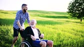 harcamak : An adult hipster son with senior father in wheelchair on a walk in nature at sunset. Stok Video