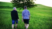 grey : An adult hipster son with senior father walking in nature at sunset. Rear view.