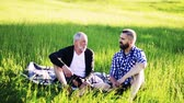quality time : An adult hipster son and senior father sitting on the grass in nature, talking. Stock Footage