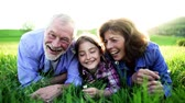 blooming : Senior couple with granddaughter outside in spring nature, relaxing on the grass.