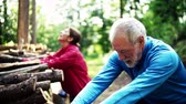 montão : Senior sporty couple stretching in the forest outdoors in sunny nature.