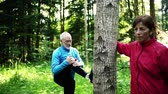 outdoor pursuit : Senior sporty couple stretching in the forest outdoors in sunny nature.