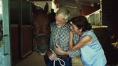 cabelo castanho : A senior couple petting a horse in a stable.